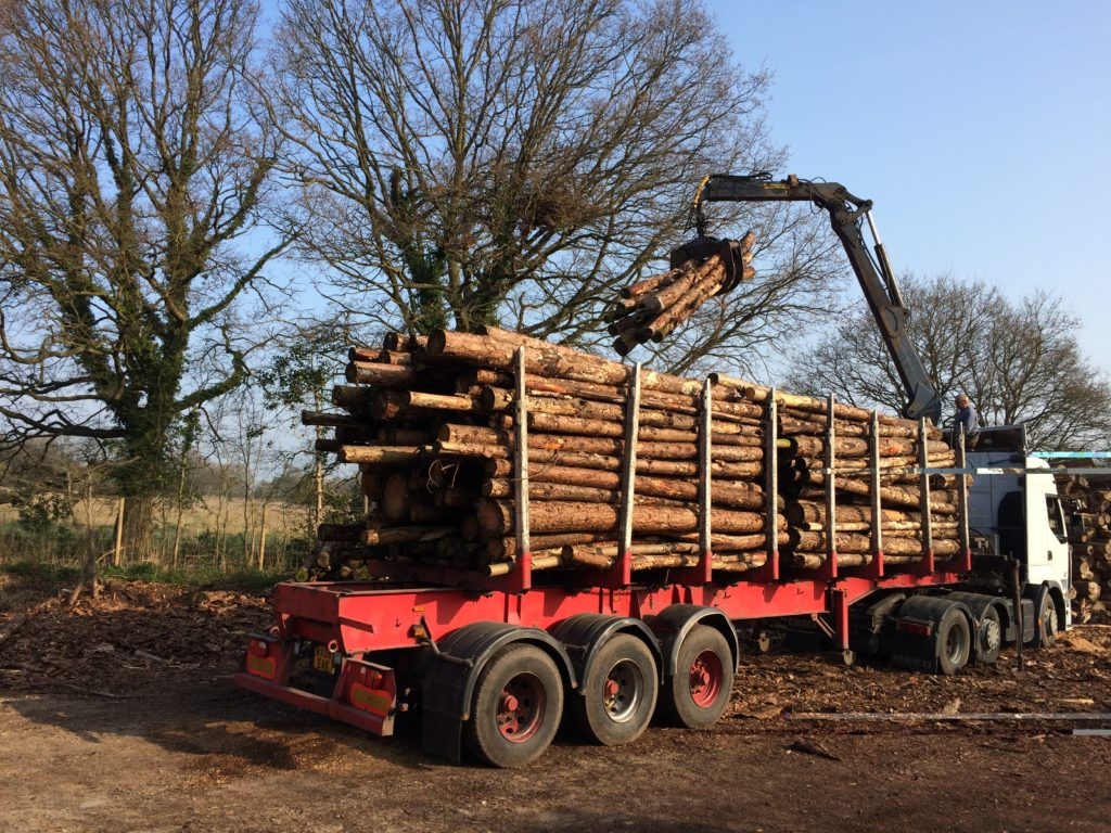 Regular delivery of timber for biomass fuel production